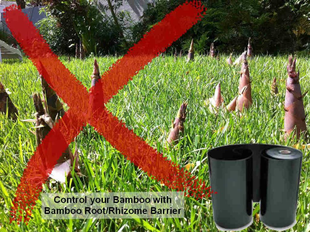 Bamboo Rhizome Barrier Best4Garden Online Garden Products