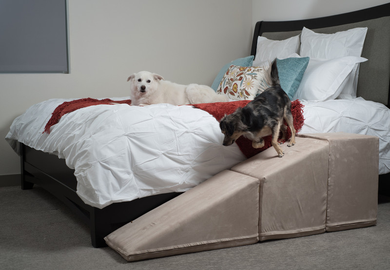 Tall Dog Ramps For Couches Amp Beds Usa Made Royal Ramps