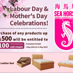 2017 Labour Day And Mother S Promotion Sea Horse