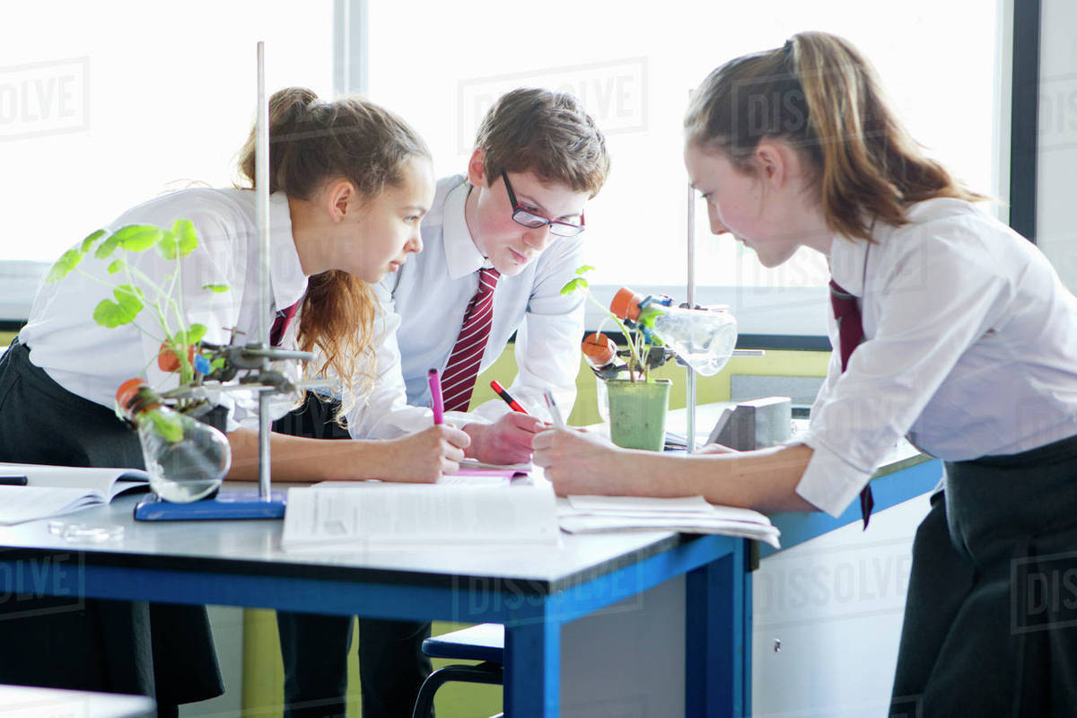 High School Students Conducting Scientific Experiment In