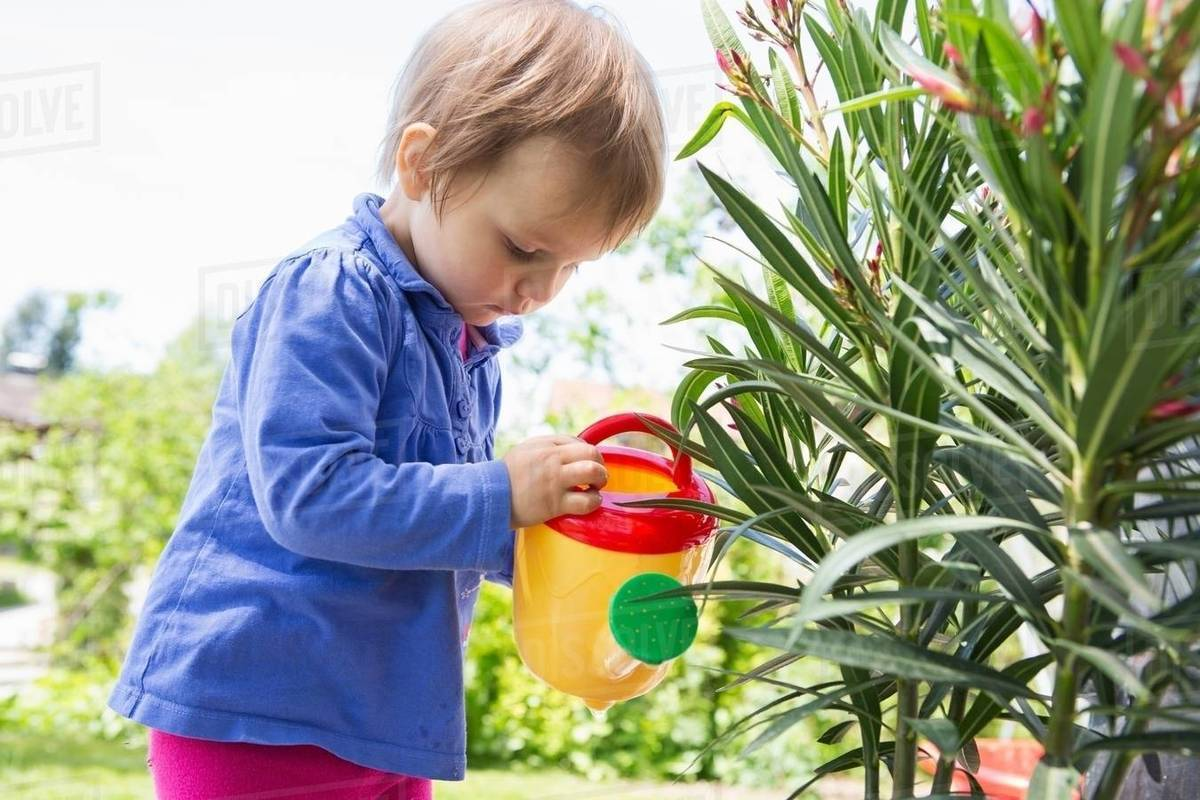 Female Toddler Watering Plants With Toy Watering Can In