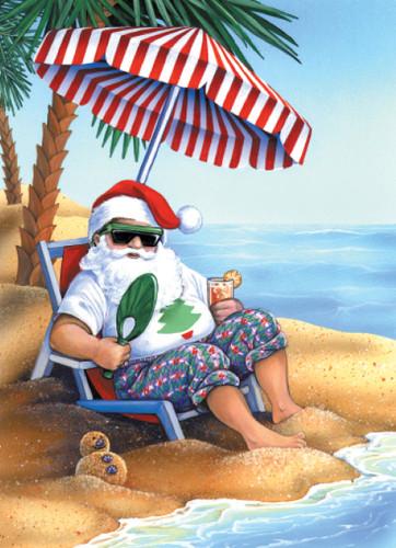 Santa Claus On The Beach Holiday Cards Coastal Christmas