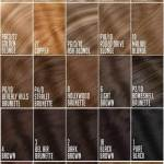 Hair Extension Color Chart For Side By Side Color Comparison