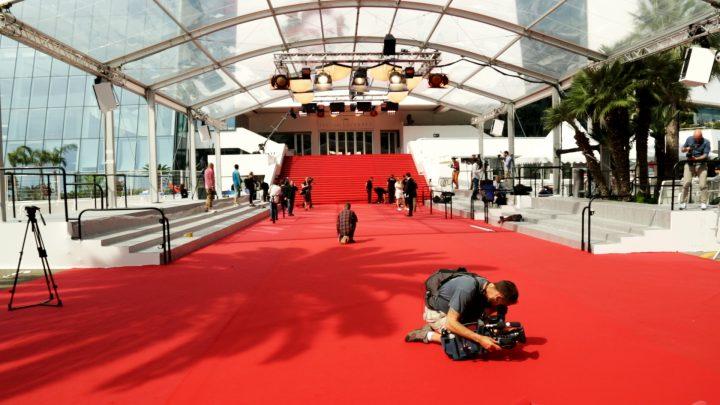 tapis rouge le festival de cannes