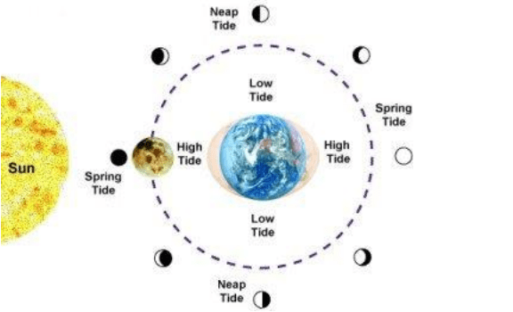 Moon Phase and Tides