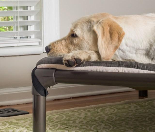 Kuranda Dog Beds Dog Beds