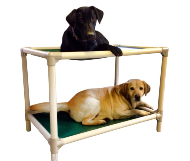 Dog Bunk Bed Almond