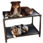 Bed Dog Bunk Bed