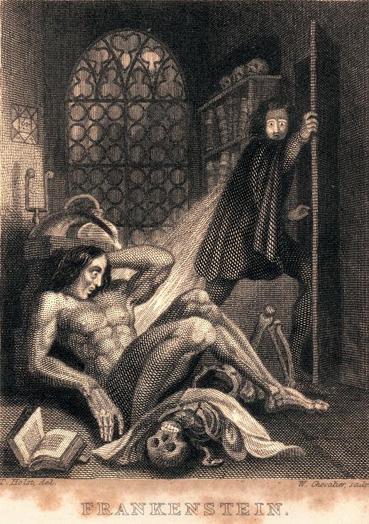 Image result for shelley frankenstein novel