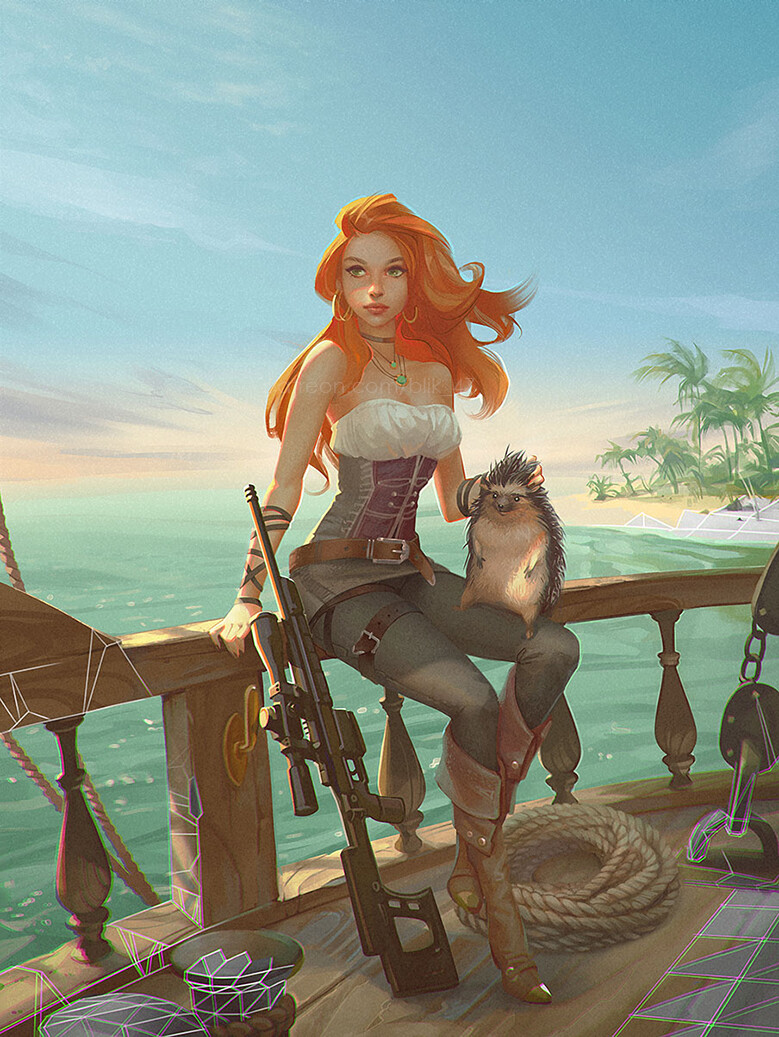 pirate, a cover for a book