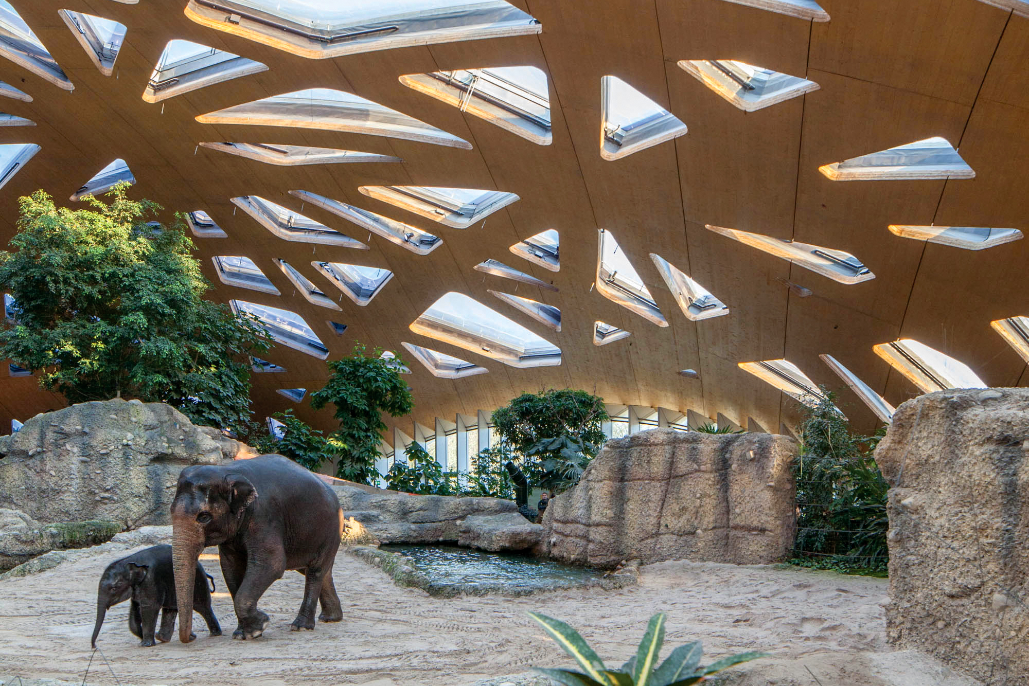 Kaeng Krachan Elephant Park Shell Architect Magazine
