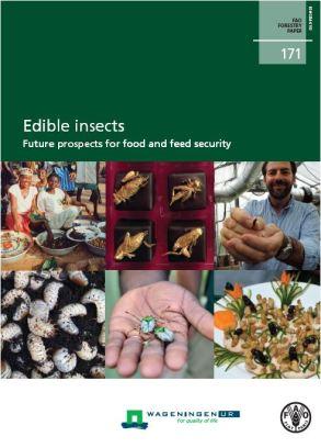 FAO insectos