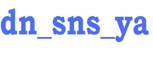 dn_sns_ya