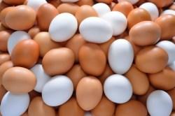 HUevos variados