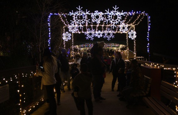 Folsom Zoo Lights