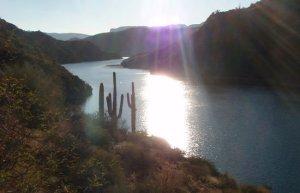the scarce water in the Arizona desert