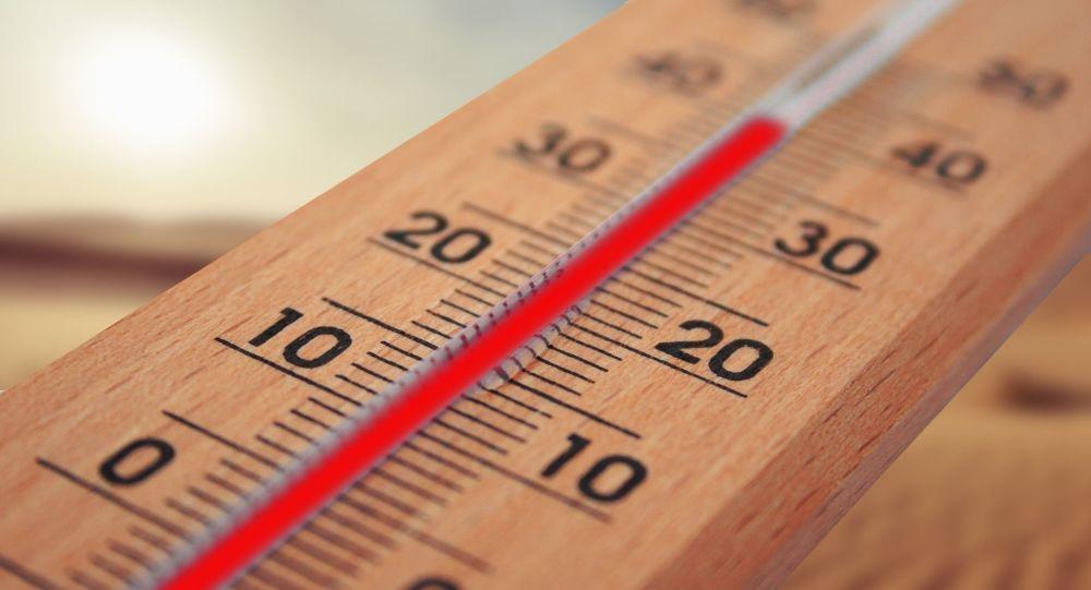 Que manger et boire en période de fortes chaleurs?