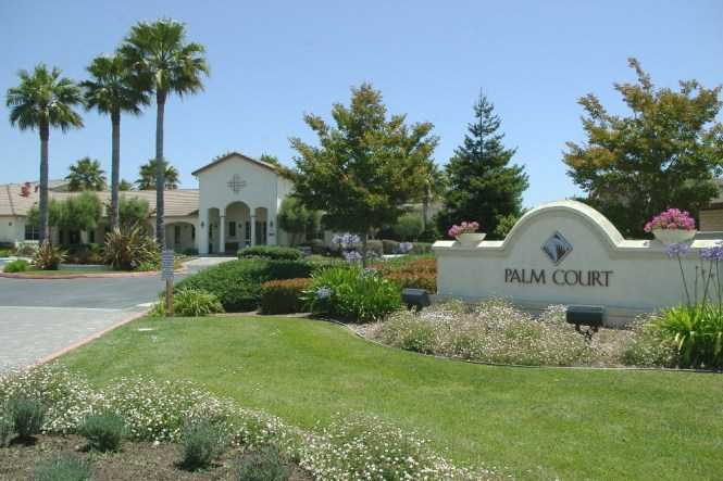 Palm Court Apartments In
