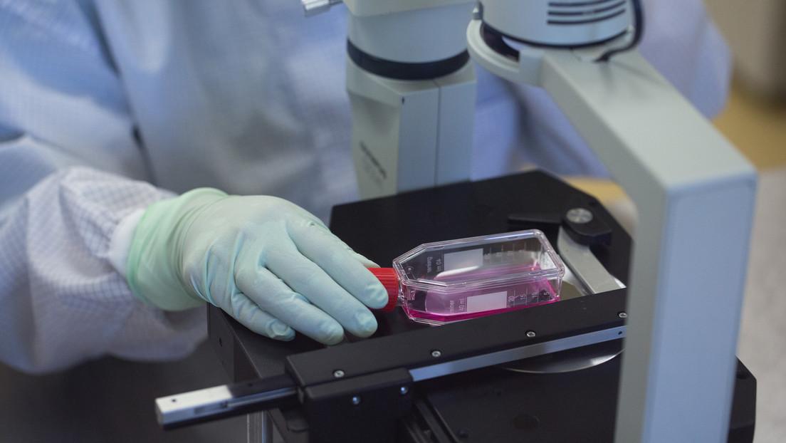 El Ministerio de Salud de Rusia da el visto bueno para los ensayos clínicos de una tercera vacuna rusa contra el coronavirus