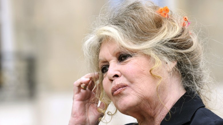 'I didn't fight against French Algeria to accept an Algerian France': Bardot slams modern-day France