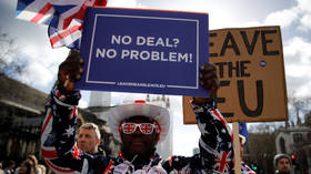Pro-Brexit protesters hold placards outside the Houses of Parliament in London © Reuters / Phil Noble