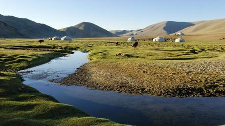 5ccdb7d3fc7e93583f8b460f Tourist warning as lethal cases of BUBONIC PLAGUE put Mongolia on high alert