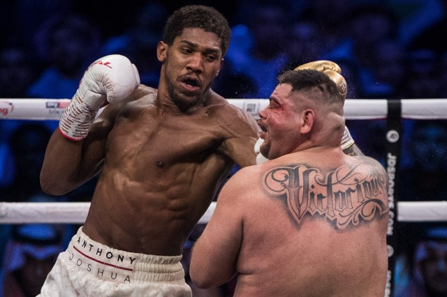 5decc4a6203027542735118c Andy Ruiz Jr vs Anthony Joshua 2 in pictures: 16 great shots from the 'Clash on the Dunes' as Joshua reclaims his titles (PHOTOS)
