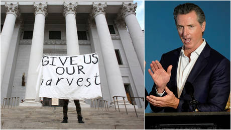 "FILE PHOTOS: (L) An activist demands reparations with a sign reading ""Give us our harvest,"" in Denver, Colorado. (R) California Gov. Gavin Newsom at a bill signing ceremony in San Diego."