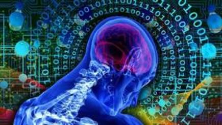 Według najnowszych badań, ludzie ufają teraz algorytmom bardziej niż sobie nawzajem
