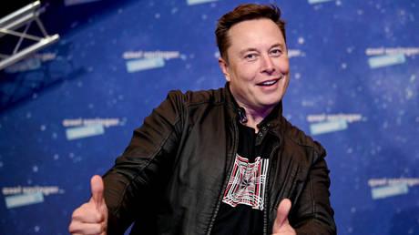 SpaceX owner and Tesla CEO Elon Musk. © AFP / Britta Pedersen