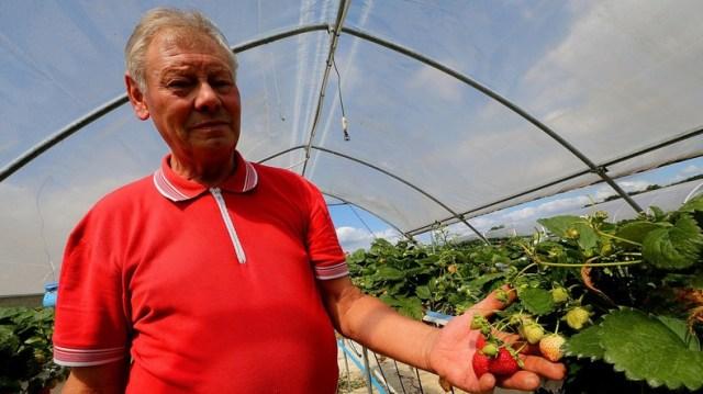 Du glyphosate dans la prostate : Jean-Claude Terlet, paysan, attaque Monsanto pour «empoisonnement»