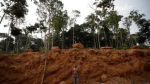Banques et fonds américains accusés par l'ONG Amazon Watch de financer la déforestation