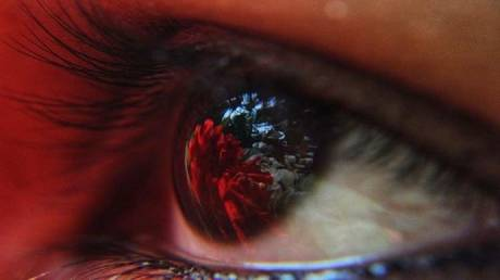 bacteria endemic to the eyeball may eliminate blindness