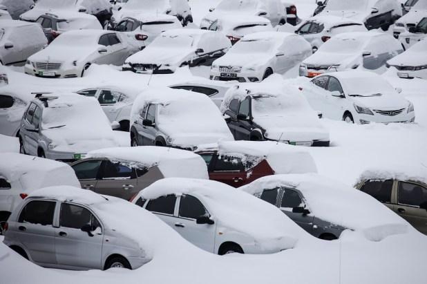 مصرع أكثر من 60 شخصا أثناء إزالة الثلوج في اليابان