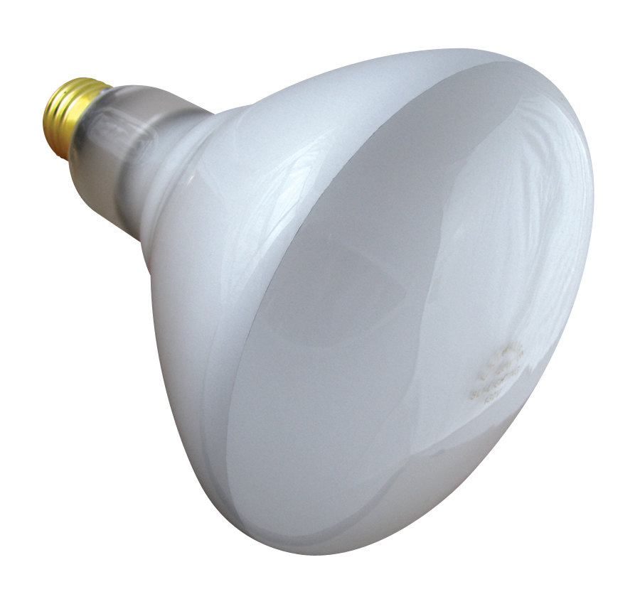 Flood Light Bulb Types