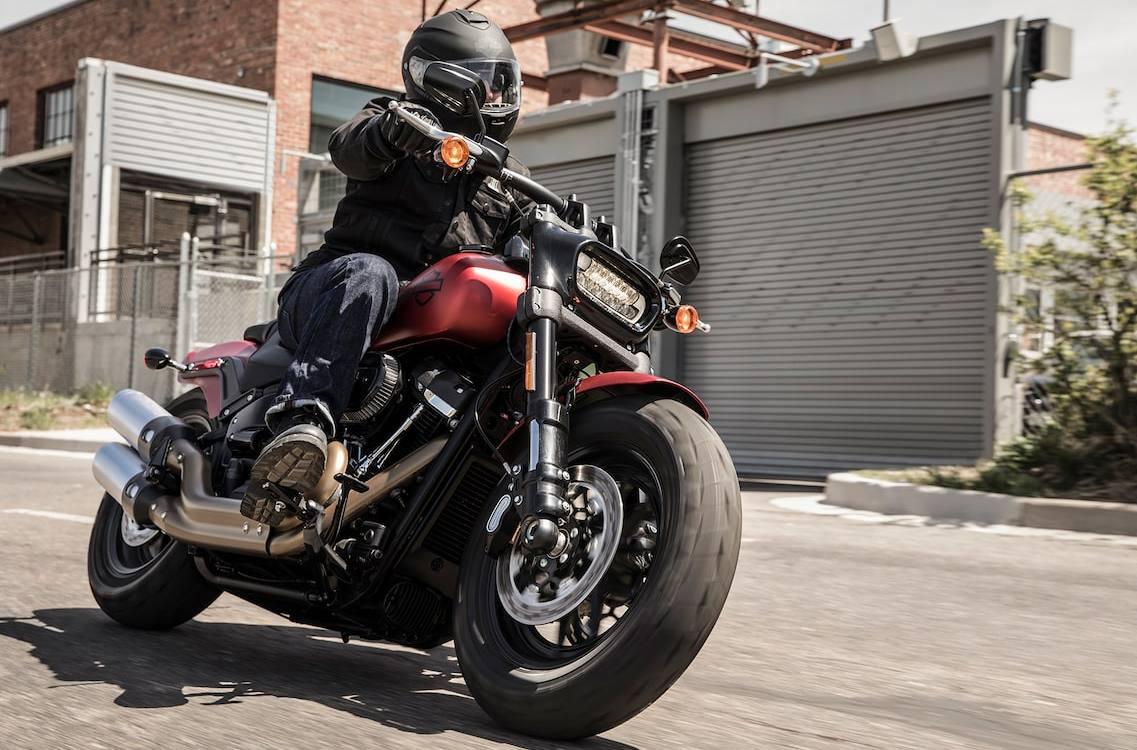 Image result for 2019 Harley Davidson fat bob