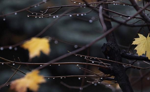 Картинки по запросу небольшой дождь