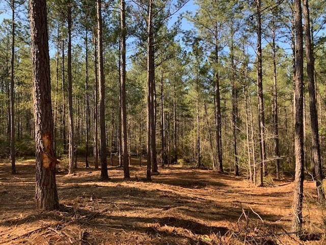 Property for sale at Lot 1 APALACHEE MEADOWS DRIVE, Madison,  Georgia 30650