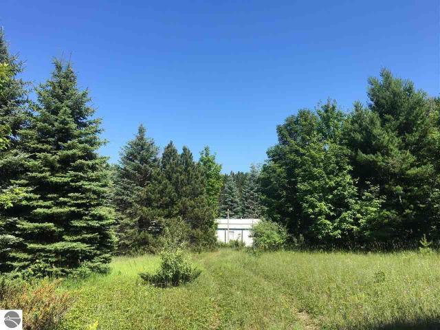 Property for sale at 12838 S Cedar Road, Cedar,  MI 49621