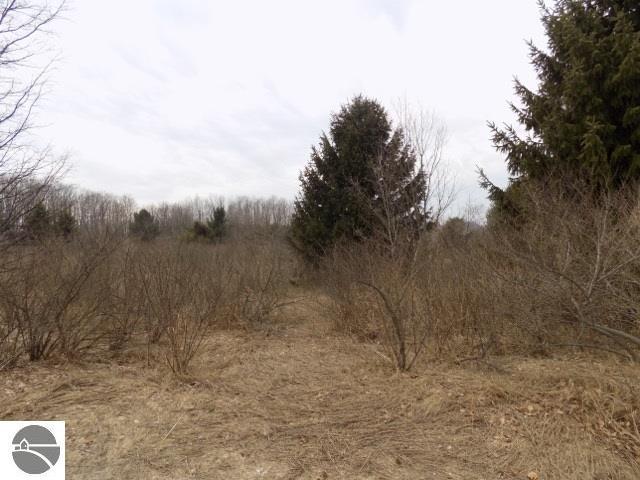 Property for sale at S Ski View Circle, Cedar,  MI 49621