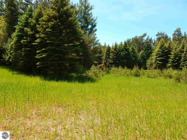 Property for sale at 24 Acres Empire Highway, Empire,  MI 49630
