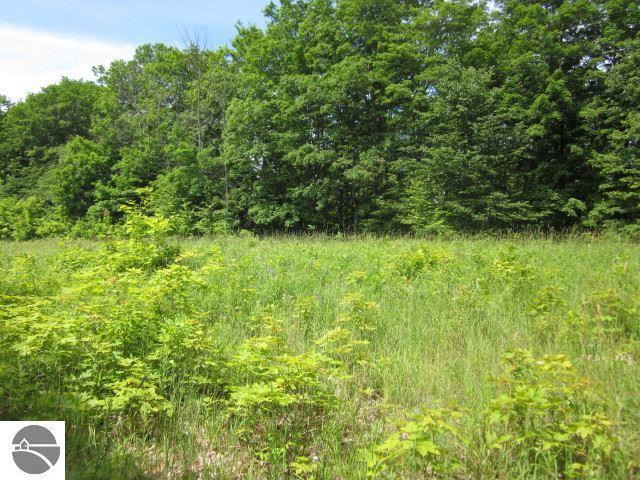 Property for sale at 3350 S French Road, Lake Leelanau,  MI 49653
