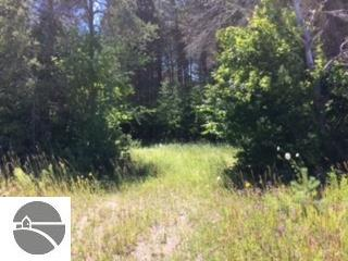 Property for sale at 0000 Bodus Road, Cedar,  MI 49621