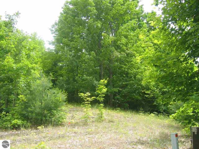Property for sale at E Pinehurst Trail, Cedar,  MI 49621