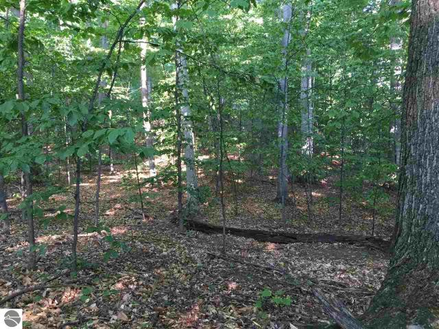 Property for sale at Lot 73 S Bay View Trail, Suttons Bay,  MI 49682