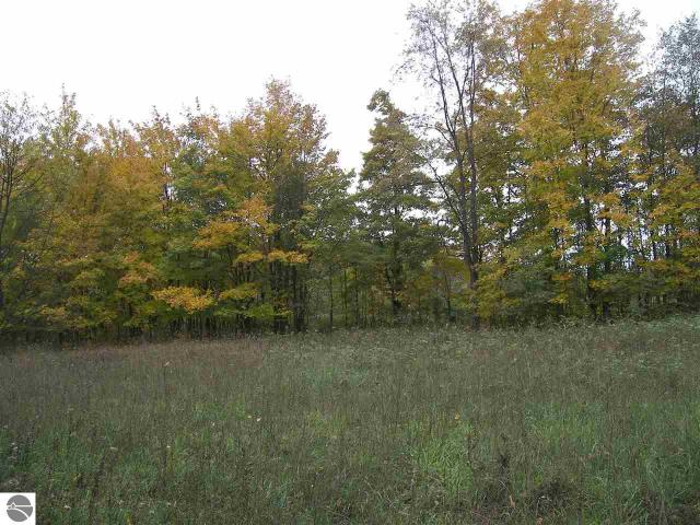 Property for sale at 5822 S Hlavka Hill Drive, Maple City,  MI 49664