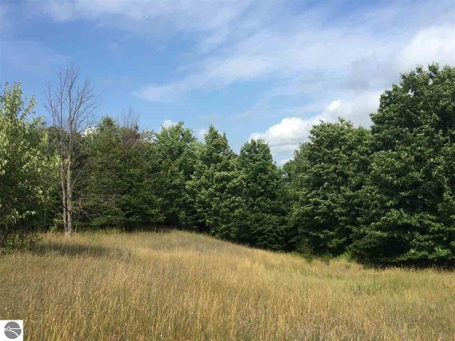 Property for sale at W Hlavka Road, Maple City,  MI 49664