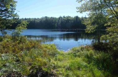 Lot 104 Lakeview Drive, Conquerall Mills, NS B4V 6G8, ,Vacant Land,For Sale,Lot 104 Lakeview Drive,201823143