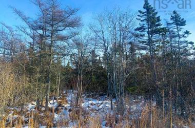 Lots C. Boudreau Road, Mavillette, NS B0W 2H0, ,Vacant Land,For Sale,Lots C. Boudreau Road,202001481