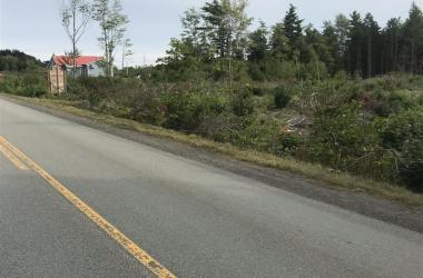 0 Langille Lake Road, Blockhouse, NS B0J 2E0, ,Commercial,For Sale,0 Langille Lake Road,202100138